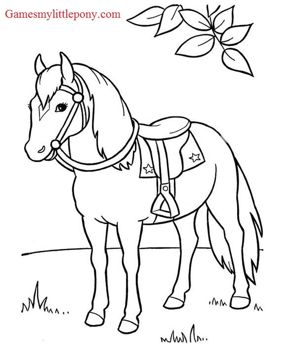 Horse Coloring On The Field Coloring Page