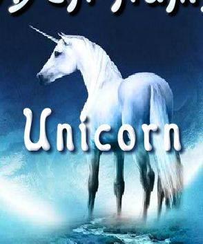 Hidden Numbers Unicorn Game