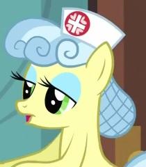 My Little Pony Nurse Ponies Character