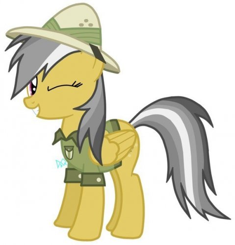 Pictures My Little Pony Daring Do Picture