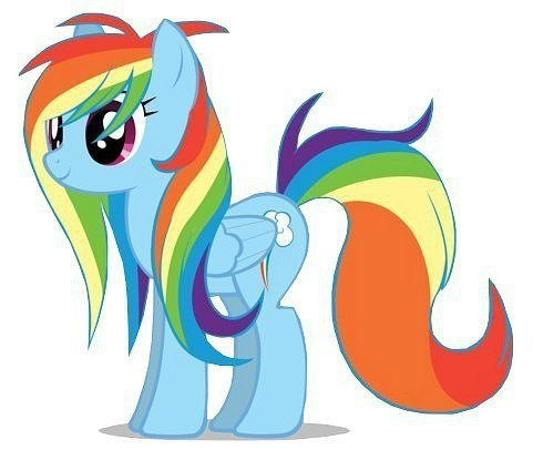 Pictures My Little Pony Rainbow Dash Picture
