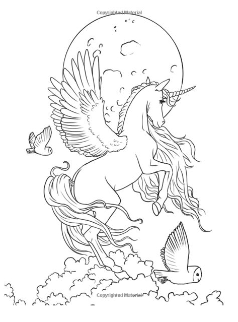 Unicorn Coloring Birds Coloring Page