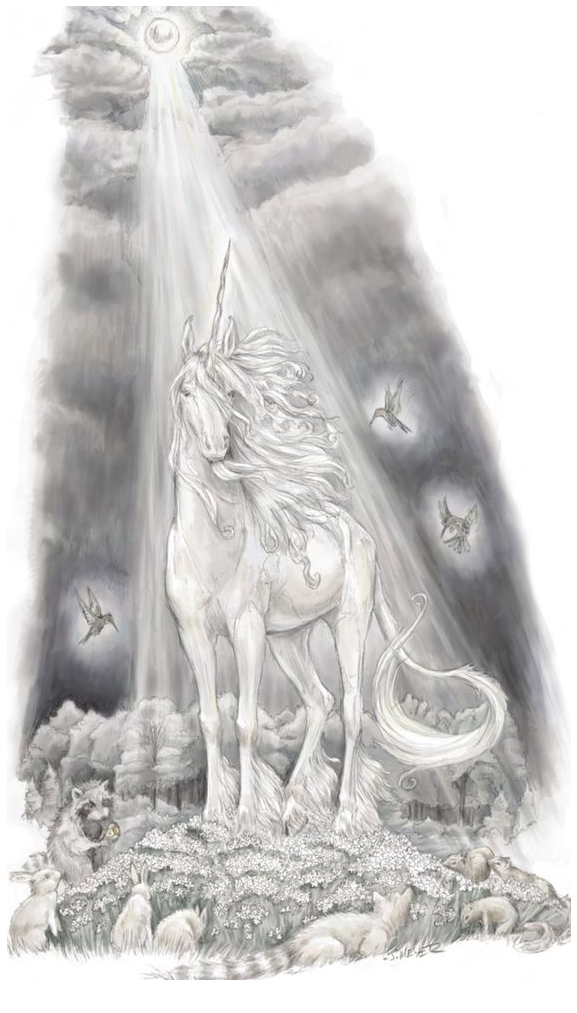 Unicorn Coloring And Light Coloring Page