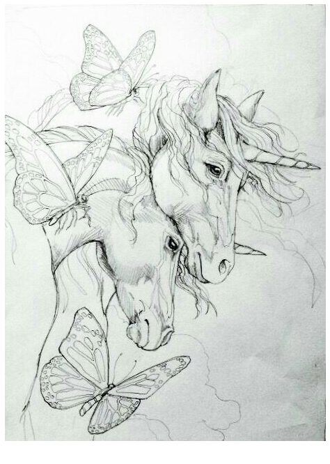 Unicorns And Butterflies Sketch Coloring Page