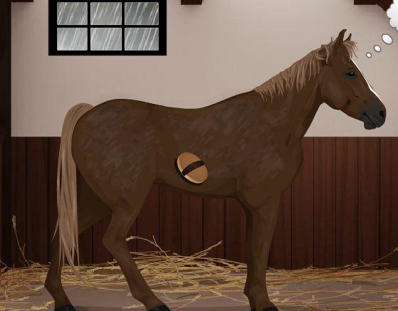Horse Dressup Game