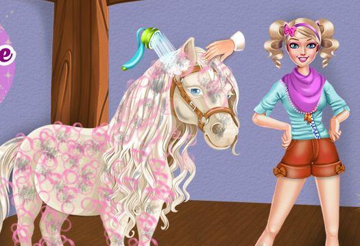 Magic Horse Caring Game
