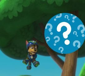 Paw Patrol Whats Missing Game