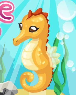 Seahorse Care Game