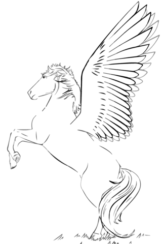 My Little Pony Rearing Pegasus Coloring Page
