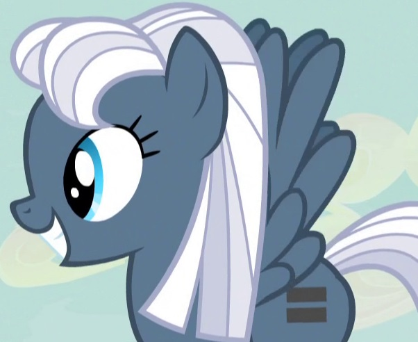 My Little Pony Night Glider Character Picture