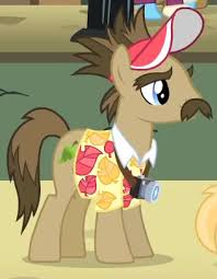My Little Pony Globe Trotter Character Picture