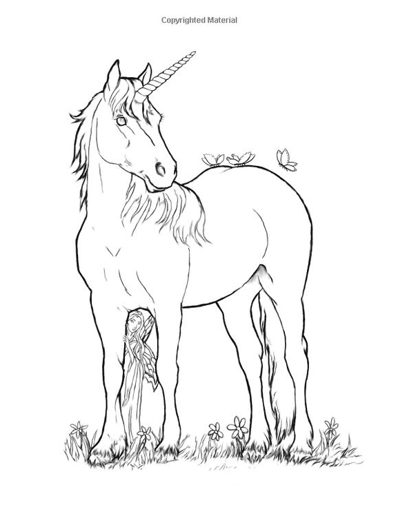 Unicorn Coloring Page  Coloring Page