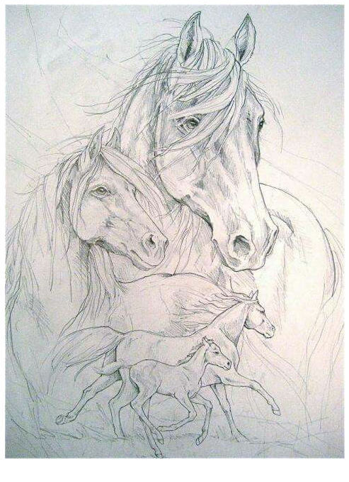 The Unicorn Familly Coloring Page