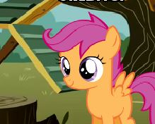 Catch the Scootaloos Game