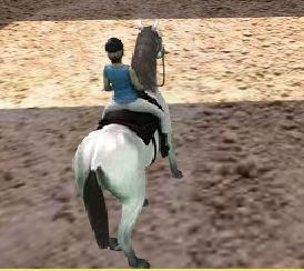 Horse Jumping 3D Game
