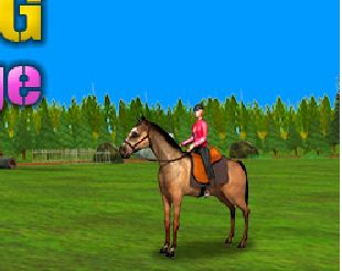 Horse Jumping Challenge Game