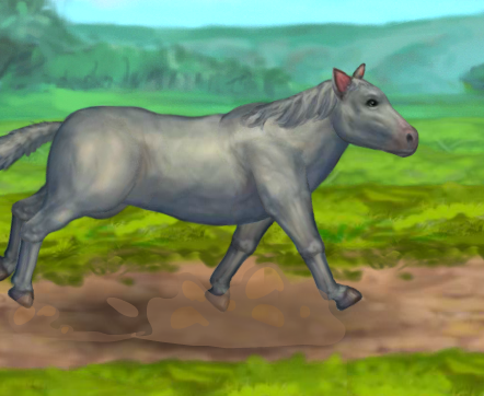 My Brave Horse Game