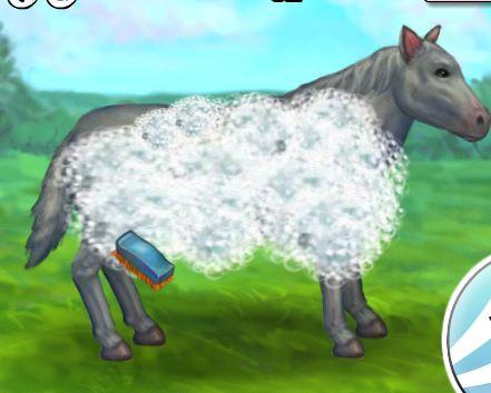My Pet Horse Game