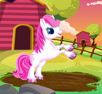 The Cute Pony Care Game